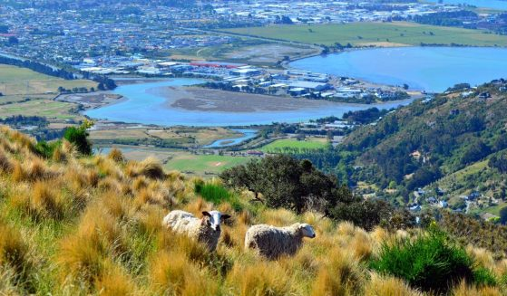 https://www.gowalkabouttravel.com/wp-content/uploads/2015/02/Christchurch-Overlooking-Non-editorial-559x327.jpg